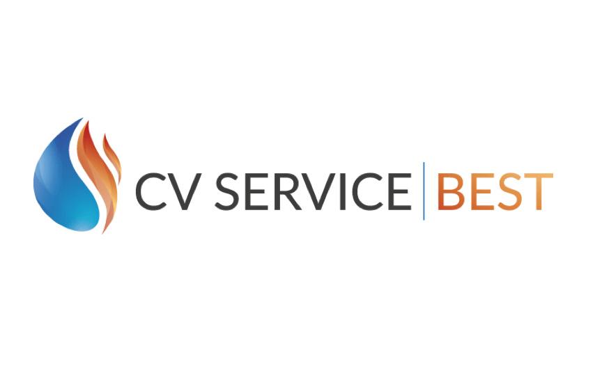 CV Service Best